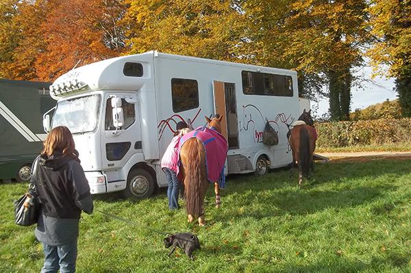 Kelly Horse Transport